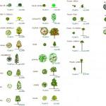 Autocad ağaç blokları