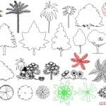 Çeşitli bitki ve ağaç çizimleri