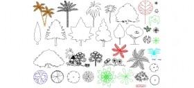 cesitli-bitki-ve-agac-cizimleri