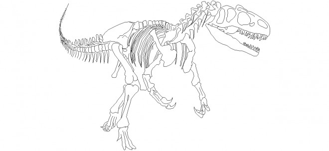 dinazor-fosili-allosarus-cizimi
