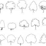Ağaç siluetleri