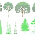 Ağaç taramaları