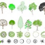 Autocad 2d ağaç çizimleri