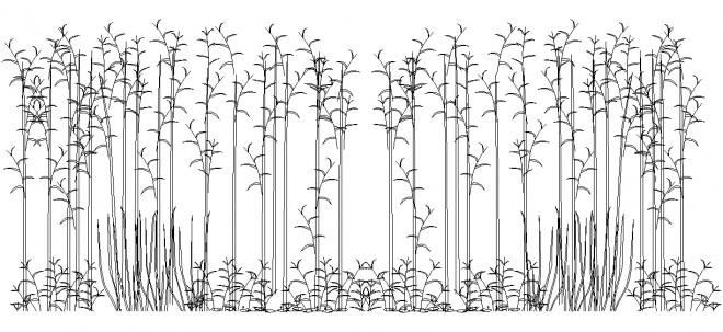 bambu-agaclari-dwgindir