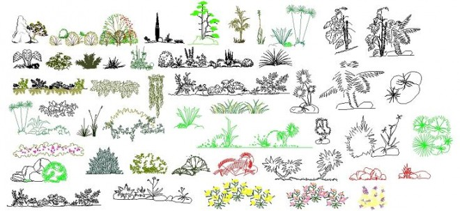 dekoratif-bitki-tefrisleri-dwgindir