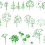 İğne yapraklı ağaçlar