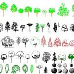 Kaliteli ağaç tefrişleri