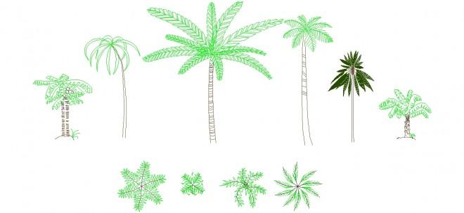 palmiye-agaci-cizimleri-dwgindir
