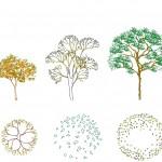 Planları ile birlikte ağaç görünüşleri