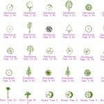 Ağaç plan ve görünüş autocad çizimleri