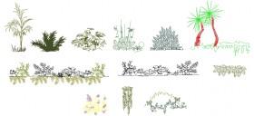 autocad-bitki-cizimleri-dwgindir