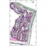 Golf sahası ve sulama projesi