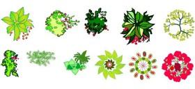 renkli-bitki-cizimleri-dwgindir