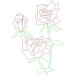2d gül çizimi