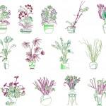 Autocad saksı çiçekleri