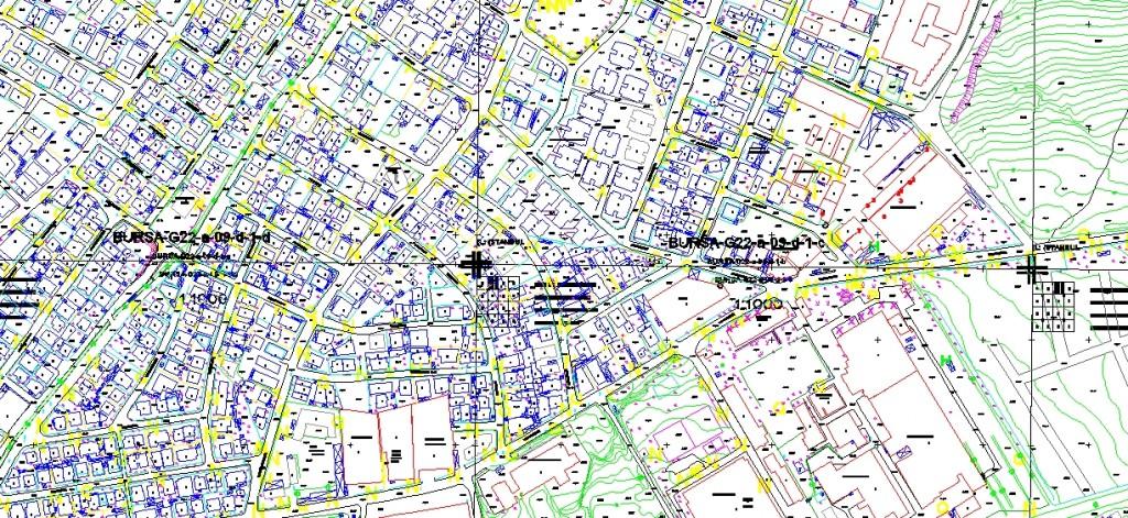 Kartal cevizli harita paftası yakından görünüş