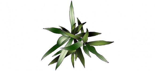 diresena-bitkisi-cizimi-dwgindir