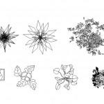 Saksı ağaçları plan çizimleri