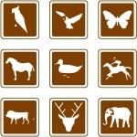 Trafik bilgi levhaları – hayvanlar